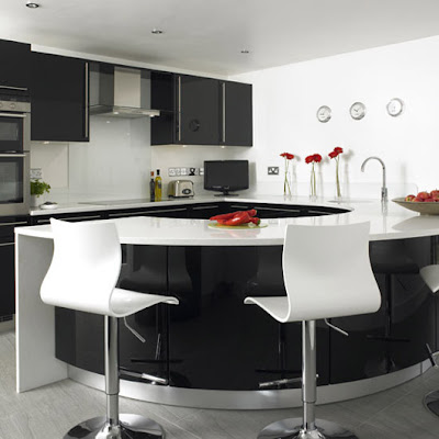 Black and White Kitchen Interior Design
