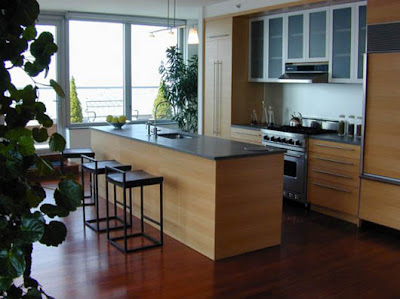 Contemporary Interior Kitchen Idea