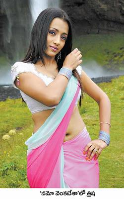 saree pics trisha saree