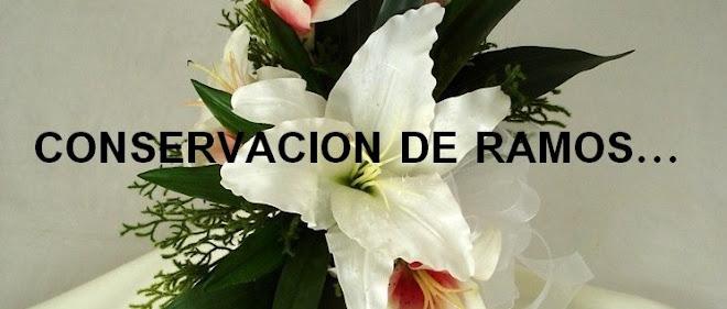 CONSERVACION DE RAMOS