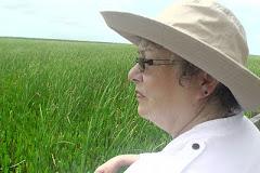 Karen Bodeen, marshlands