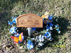 Wreath I made for Jack: Blue flowers and butterflies