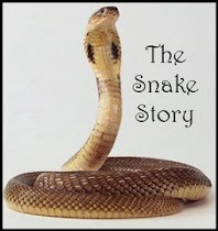 Our Snake Story