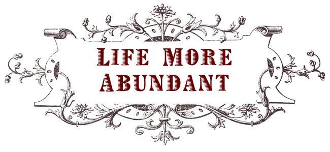 Life More Abundant