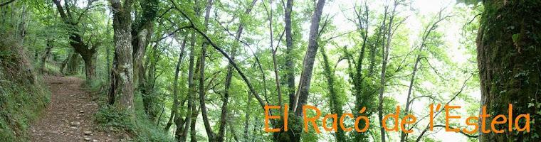 El racó de l'Estela