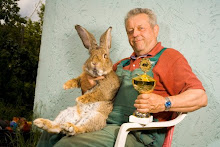 Man with Rabbit
