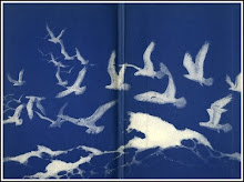 Birds and Waves Book Cover