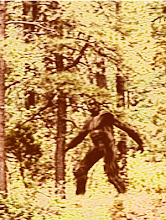 Cropped, Close-up of Bigfoot
