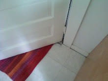 Door, Rug and Floor