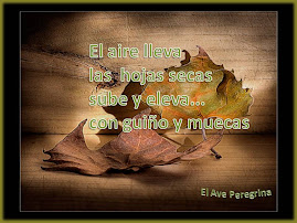 EL AIRE LLEVA...