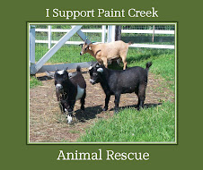 Paint Creek Animal Rescue