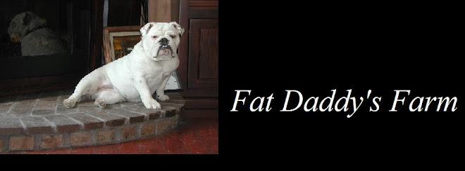 Fat Daddy's Farm News
