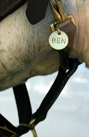 Ben's Halter Name Plate