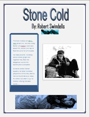 stone cold robert swindells shelter essay