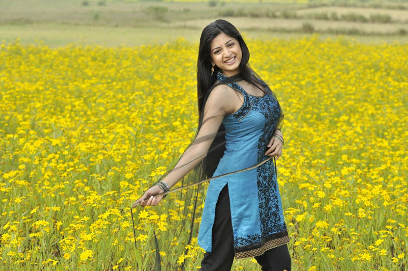 Poonam Kaur New Hot Stills from Nagavalli Movie unseen pics