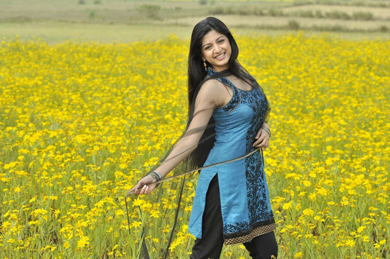 Poonam Kaur New Hot Stills from Nagavalli Movie hot photos