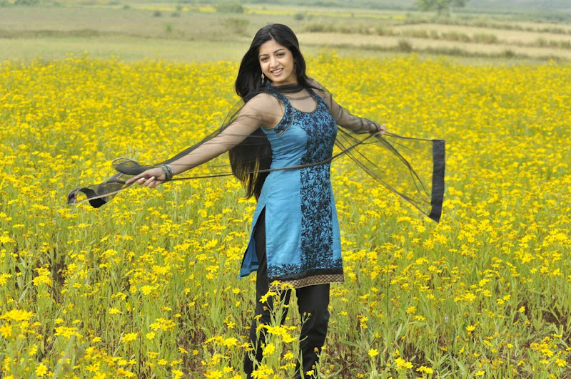 Poonam Kaur New Hot Stills from Nagavalli Movie hot images