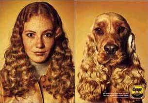 Una perra... y su mascota