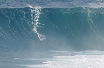Jaws Fan Page