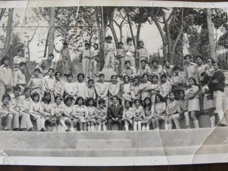 Colegio Paltas por Daniela Correa