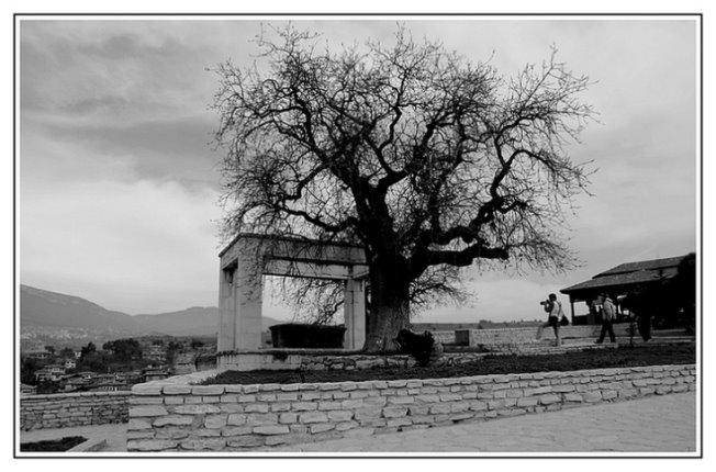 159- Safranbolu'da fotoğrafçılar 01