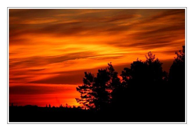 199 - Bu akşam balkonumdan...
