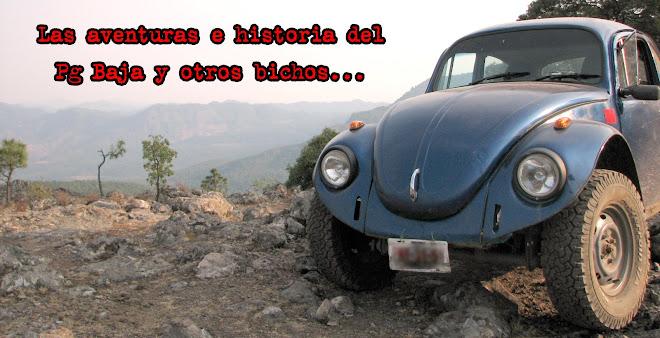 Las aventuras e historia del Pg Baja y otros bichos...