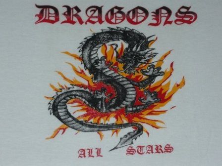 DRAGONS ALL STARS