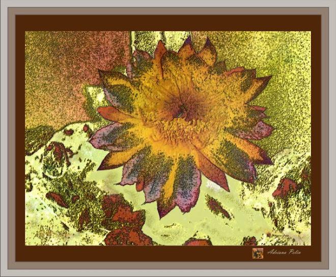 MY DELICATE FLOWERS III