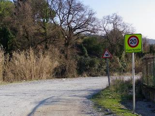 Senyal de 20 Kmh en el camí forestal