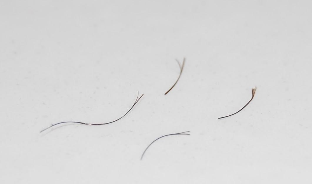 Cutting Split Ends Natural Hair