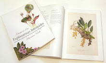 精美图书2