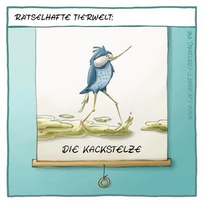 unbekannte Tierwelt rätselhafte Kackstelze Tiere Vogel Vögel kacken scheissen Kacke Cartoon Cartoons Witze witzig witzige lustige Bildwitze Bilderwitze Comic Zeichnungen lustig Karikatur Karikaturen Illustrationen Michael Mantel lachhaft Spaß Humor