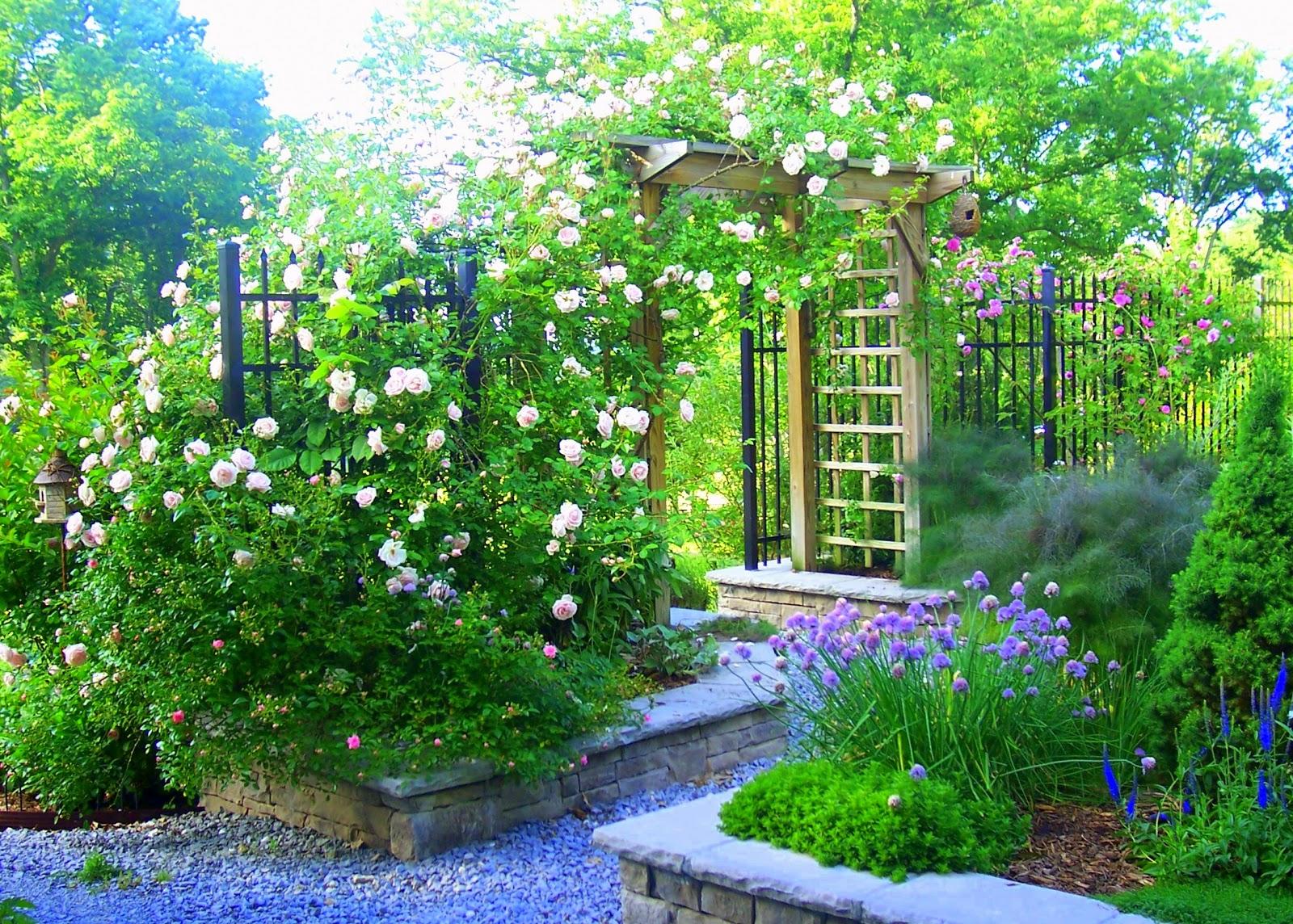 a kitchen garden story lavender blue garden design