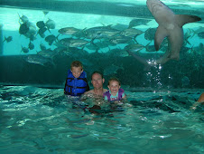 Tyler Gary and Abby swimming with sharks