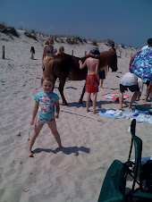 Abby with pony in background on beach