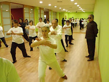 CHINARTE Workshop with Grandmaster Fu