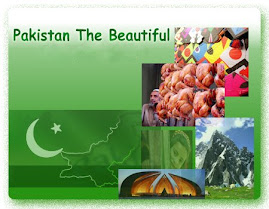 Pakistani food and culture