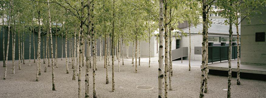 Basel and architects on pinterest for Vogt landscape architects