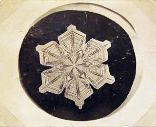 fotomiografia12 feita por wilson a bentley de um floco de neve_cristal de neve