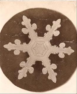 fotomiografia3 feita por wilson a bentley de um floco de neve_cristal de neve