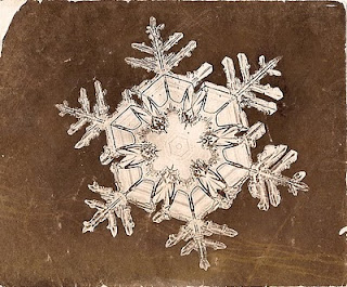 fotomiografia2 feita por wilson a bentley de um floco de neve_cristal de neve