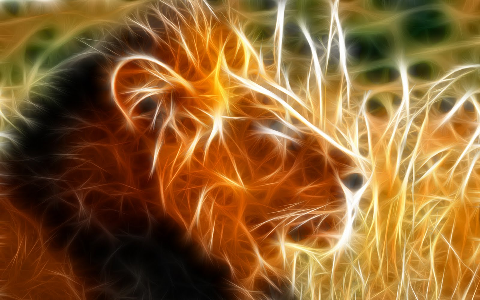http://4.bp.blogspot.com/_fGfxzT8Q-4U/S8-B3FRfZuI/AAAAAAAAAWM/7ZO9fyGL7t8/s1600/The_King_lion_hd_wallpapers.jpg