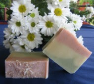 Lime, Coconut &amp; Aloe Vera Soap Bar