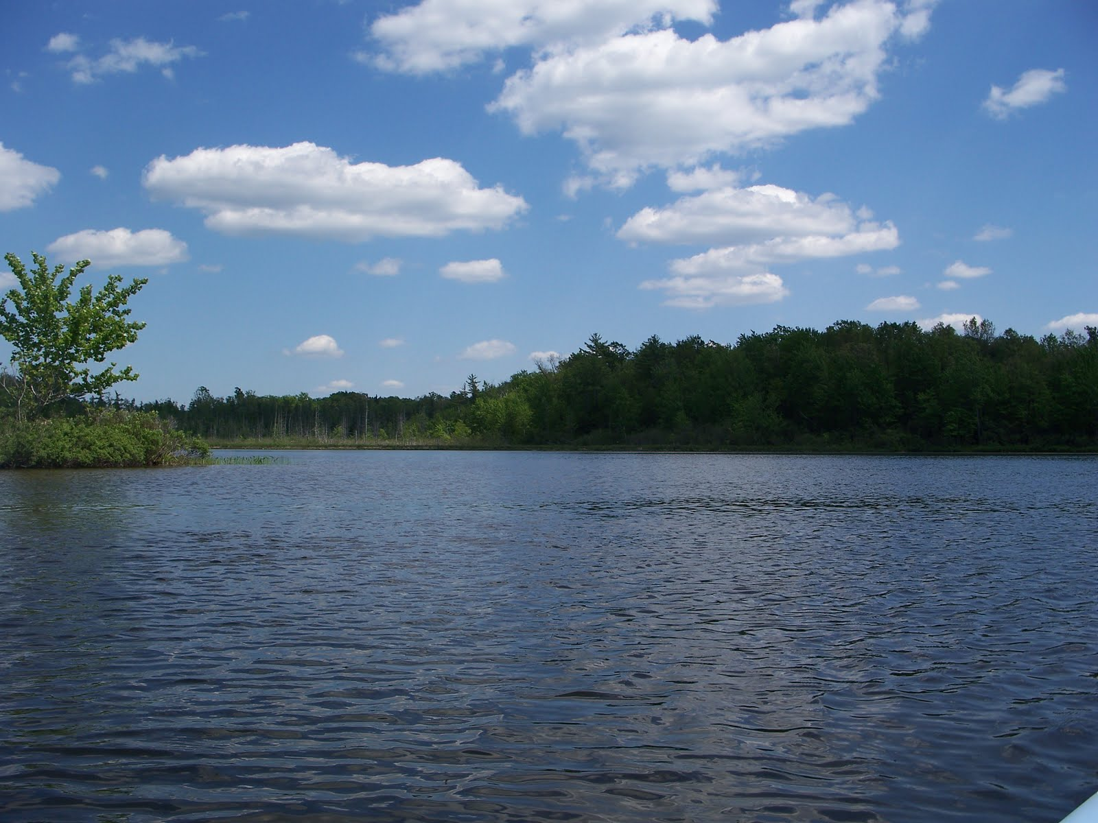 Dren of the wilderness benton lake newaygo county mi for Fishing access near me