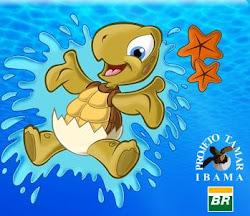 Em defesa das tartarugas marinhas
