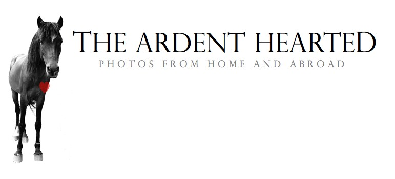 The Ardent Hearted