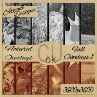 http://scrappetizing.blogspot.com/2009/10/cu-fall-themed-overlays.html