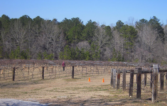 Alabama Wine Trail