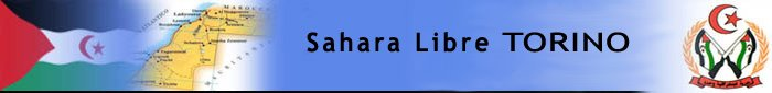 SAHARA LIBRE TORINO